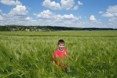 Ryan in one of the many fields.